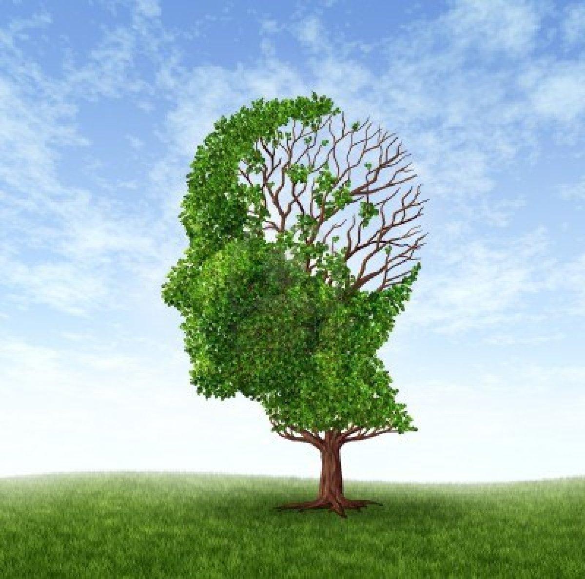 13559416-dementie-concept-van-geheugenverlies-als-gevolg-van-alzheimer