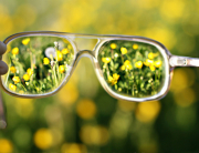 glasses-beatiful-green-nature-Favim.com-467188